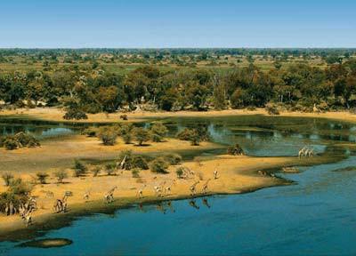 30.-31.den: delta řeky okavango – unikátní ekosystém řeky