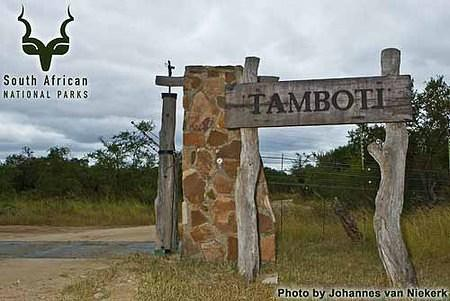 knp-20--20tamboti-20--20entrance-20gate-20--201d309564.jpg