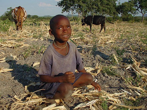 full-zimbabwe-boy-in-field.jpg